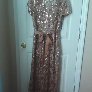 R&M Richards Women's Lace Sequined Gown Size 12